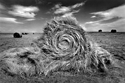 Bale of Hay Undone by Jerry Gay